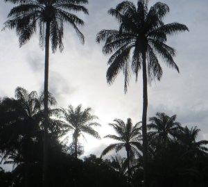 Sunset, Sierra Leone, Tonkolili, Freetown, travel Sierra Leone, Sierra Leone tourism,