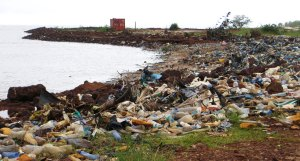 Lambanyi Beach, Conakry tourism, Guinea tourism, things to do in Conakry, Elizabeth Around the World