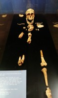 Lucy, Ethiopia, Addis Ababa, Lucy national museum, skeleton, cradle of mankind