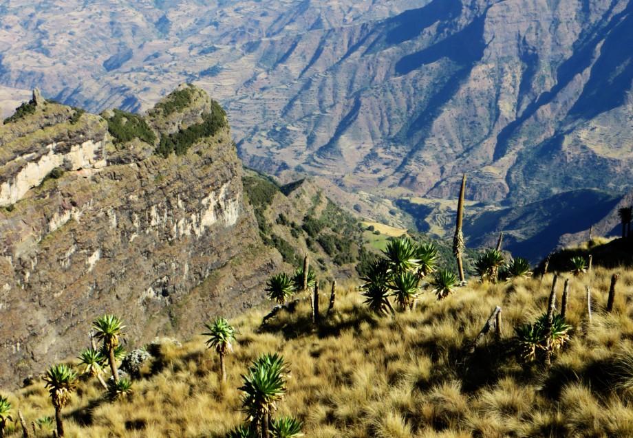Ethiopia, Simien Mountains, Ethiopia travel, Gondar
