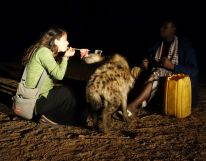Elizabeth Around the World, Elizabeth McSheffrey, Hyenas of Harar, Harar, hyenas, Ethiopia, Ethiopia tourism, Hyena man, Harar tourism