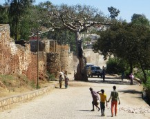 Harar, Harar Jugol, Old walled city, Ethiopia, Harar tourism, Ethiopian tourism