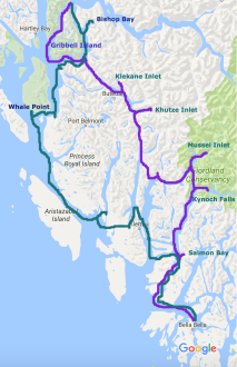 Great Bear Rainforest, trip itinerary, Bluewater Adventures, Elizabeth Around the World