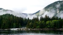 Great Bear Rainforest, scenery, landscape, British Columbia, Mountains, old-growth forest