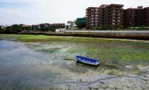 low tide, Indian Ocean, Dar es Salaam, Sea View Road, tourism Dar es Salaam, travel itinerary Tanzania, Tanzania